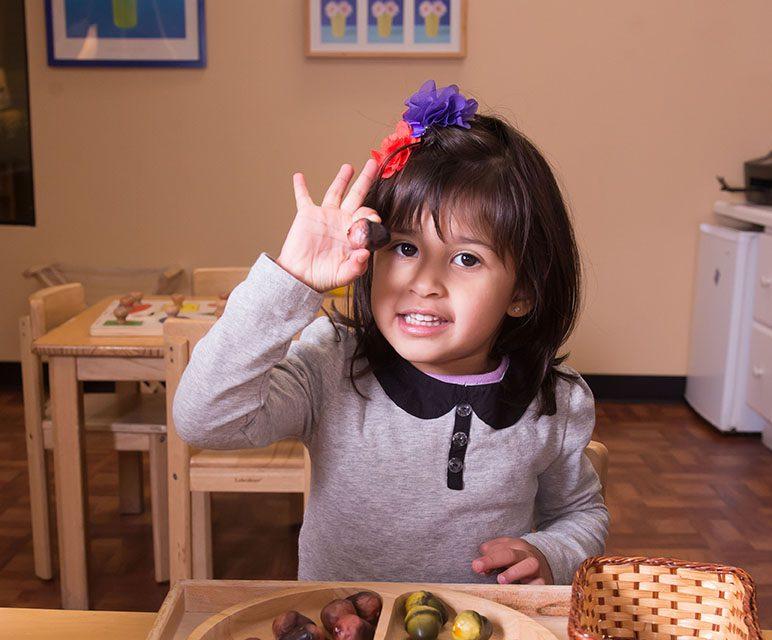 Dear Cathie: The Price of Montessori