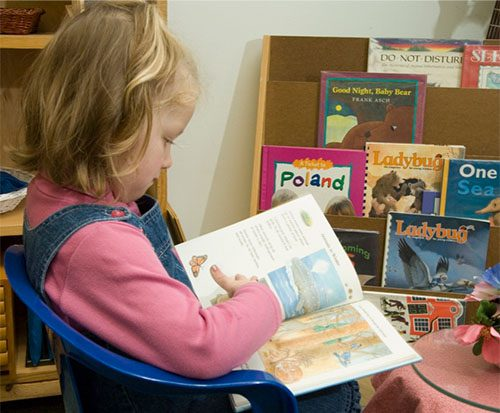 Early Literacy in the Montessori Toddler Setting: Supporting Learning through the Sensitive Periods