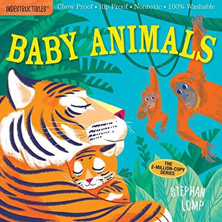 Book Review:  Baby Animals & Things That Go