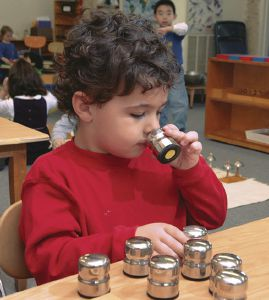 A Tour of a Montessori Classroom: Lessons in Sensory Perception