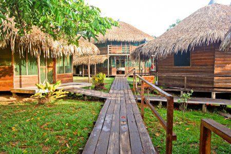 The World of Peteleco: Montessori in Brazil