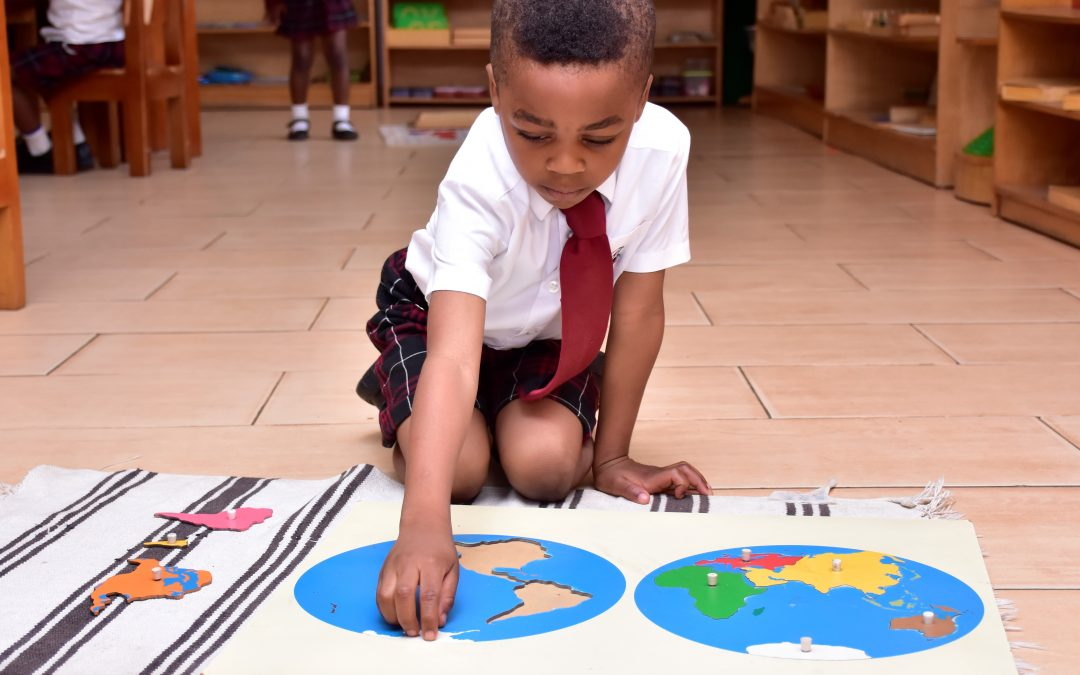 Montessori and Advocacy: Next Steps