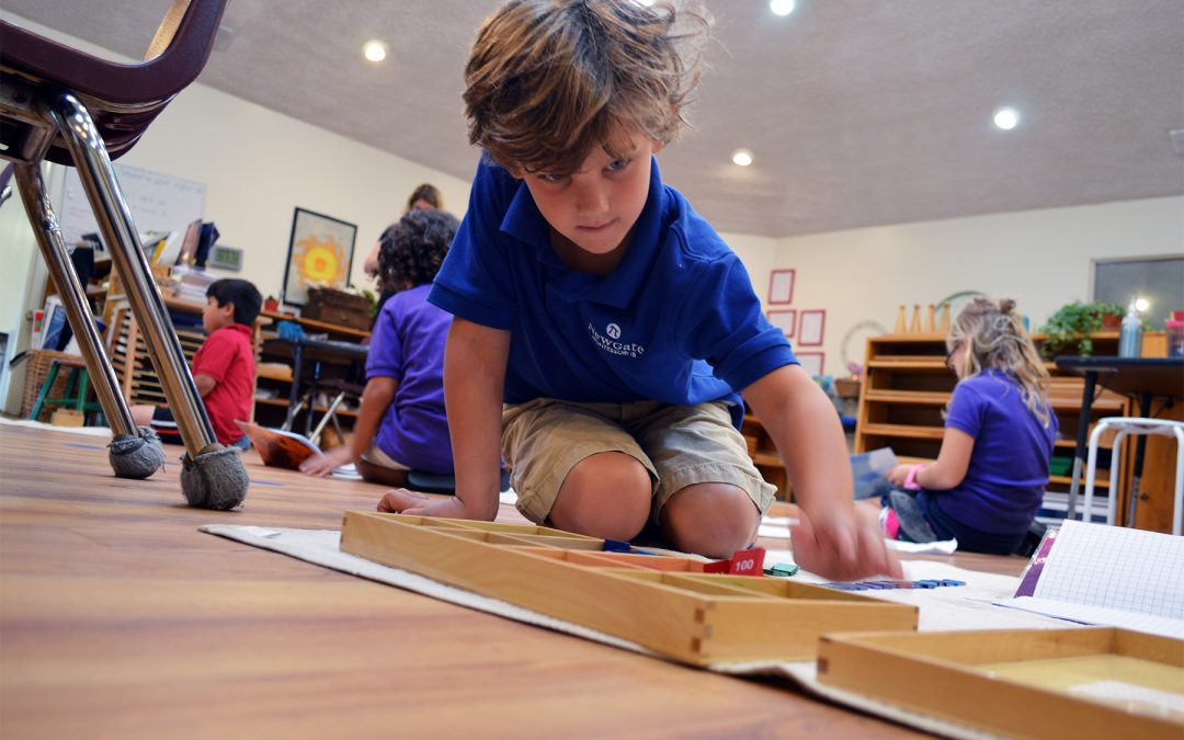 Montessori Discipline: Developing Inner Discipline Through Freedom and Structure