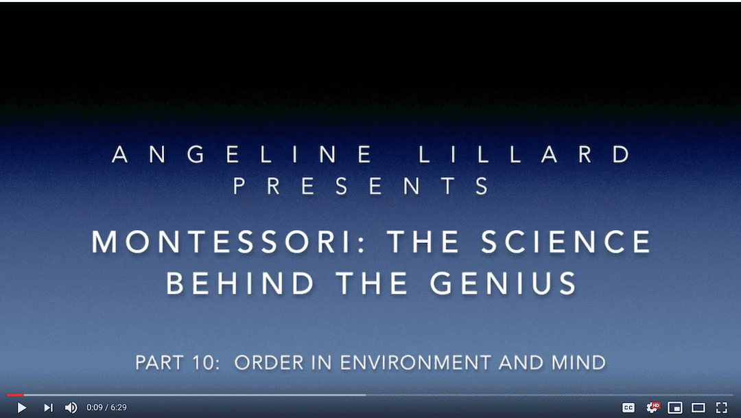 Montessori: The Science — Part 10: Order in the Environment and Mind
