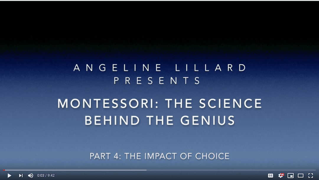 Montessori: — The Science  Part 4: The Positive Impact of Choice