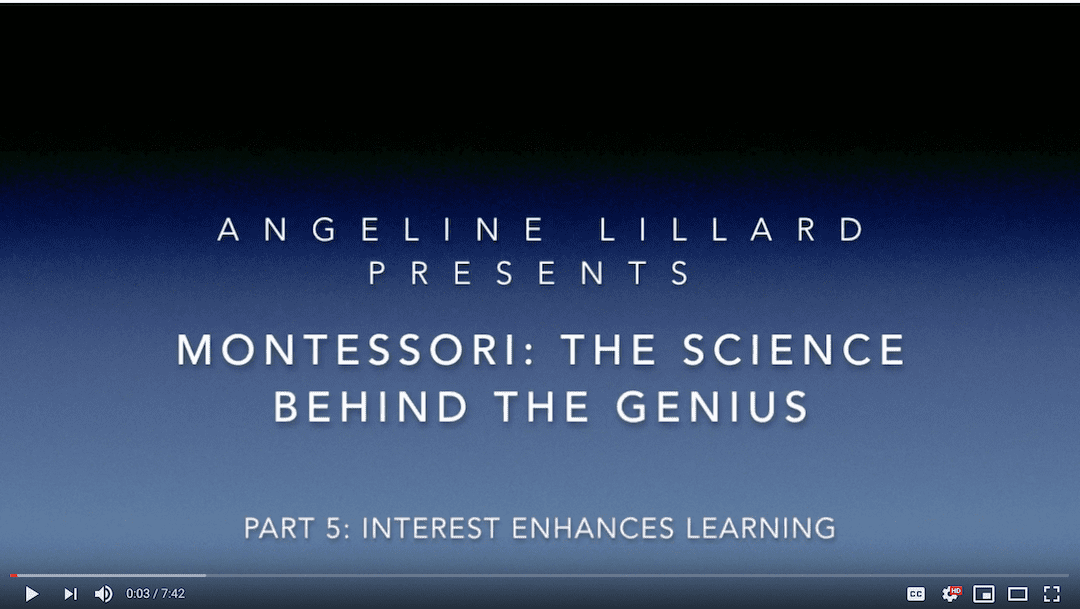 Montessori: The Science — Part 5: Interest Enhances Learning