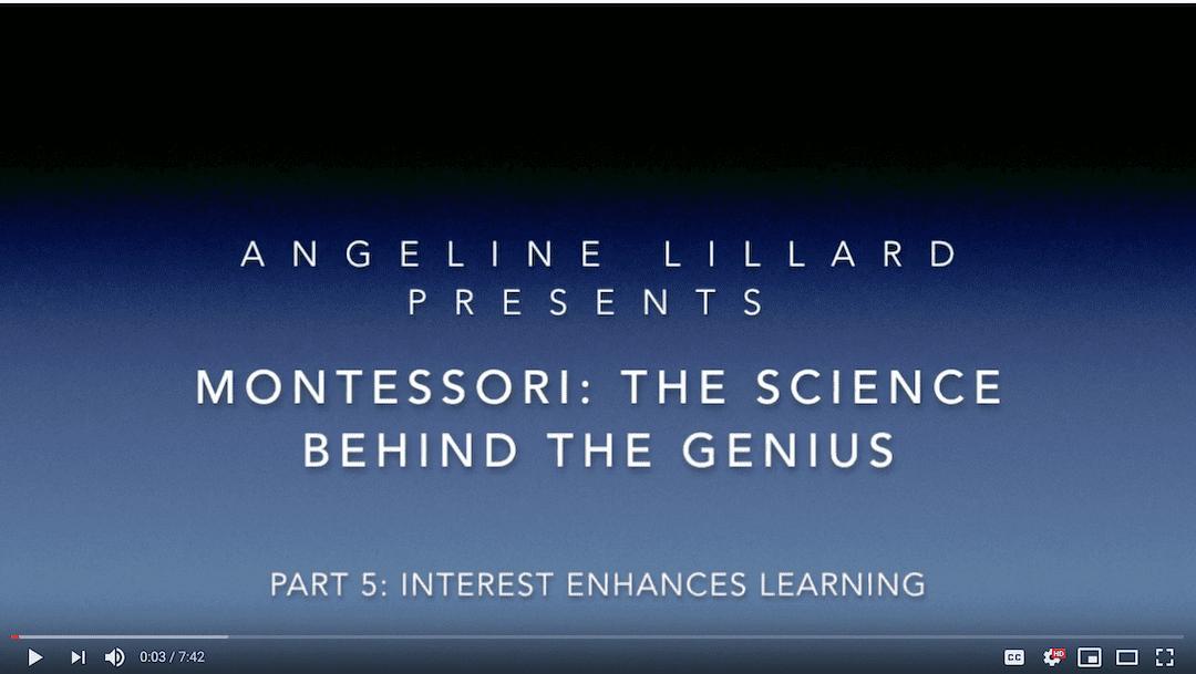 Montessori: The Science — Part 5: Interest Enhances Learning