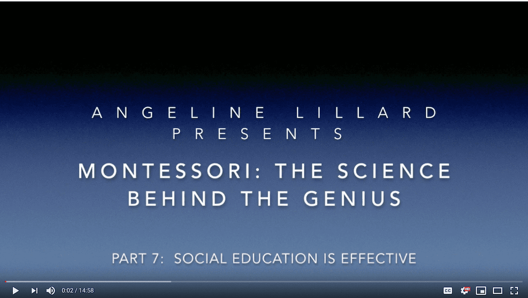 Montessori: The Science — Part 7: Social Education is Effective