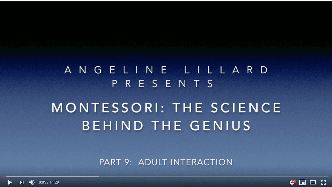 Montessori: The Science — Part 9: Positive Adult Interaction