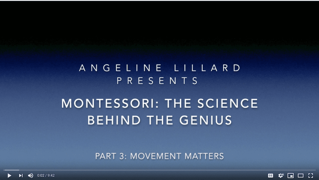 Montessori: The Science — Part 3: Movement Matters