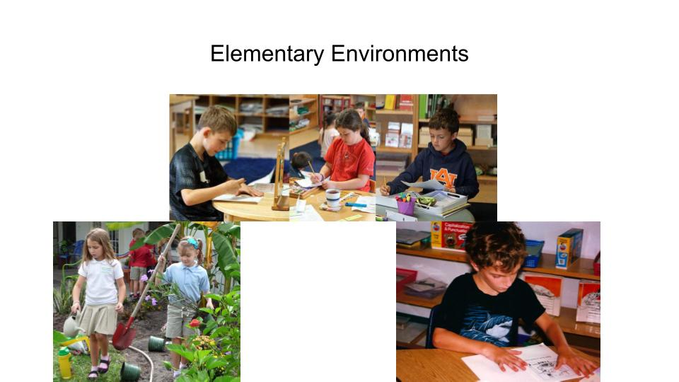 Journey Into the Montessori Learning Experience
