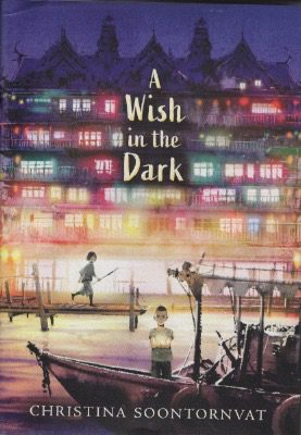 Book Review:  A Wish In The Dark